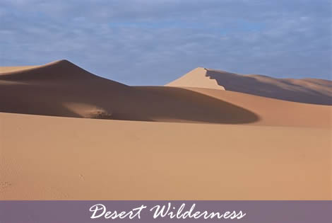 Morocco - Desert Wilderness